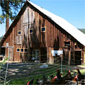 Willow-Witt Ranch Barn - Ashland Creamery