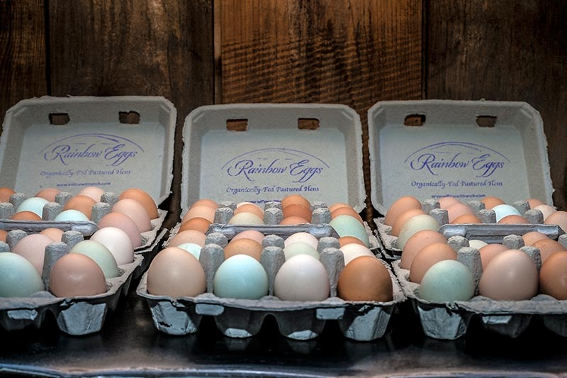 Certified Organic Rainbow Eggs