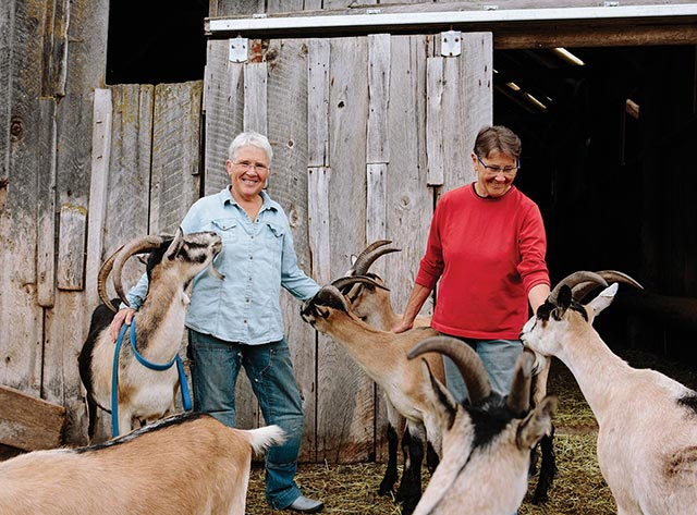 Meet The Modern Farmers: Suzanne Willow and Lanita Witt at Willow-Witt Ranch