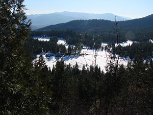 Looking back at Willow-Witt Ranch and surrounding forest in winter